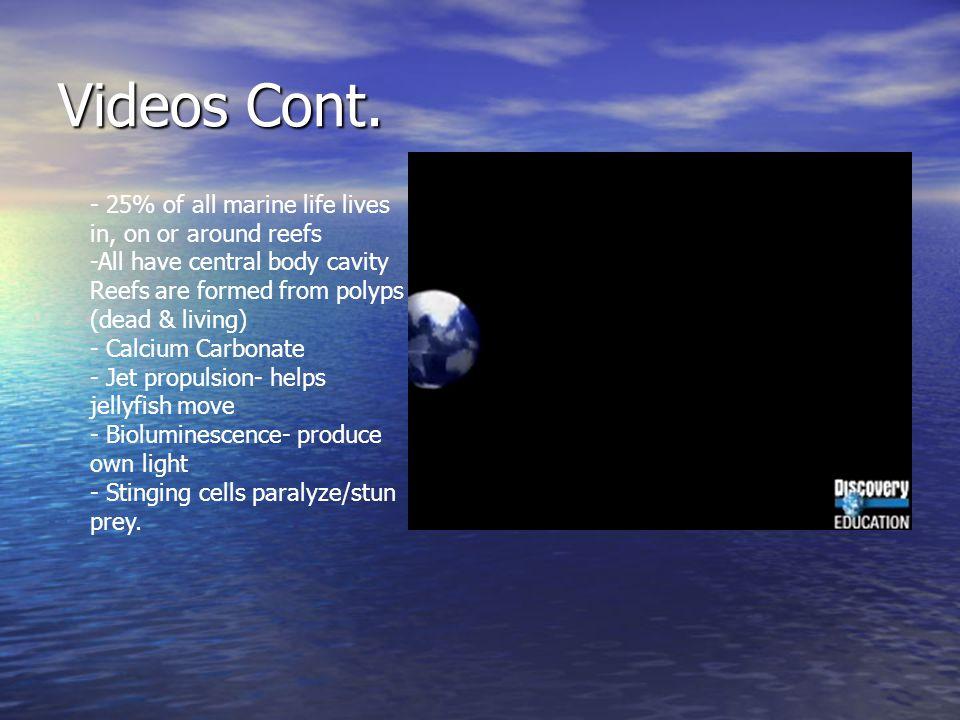 Videos Cont.
