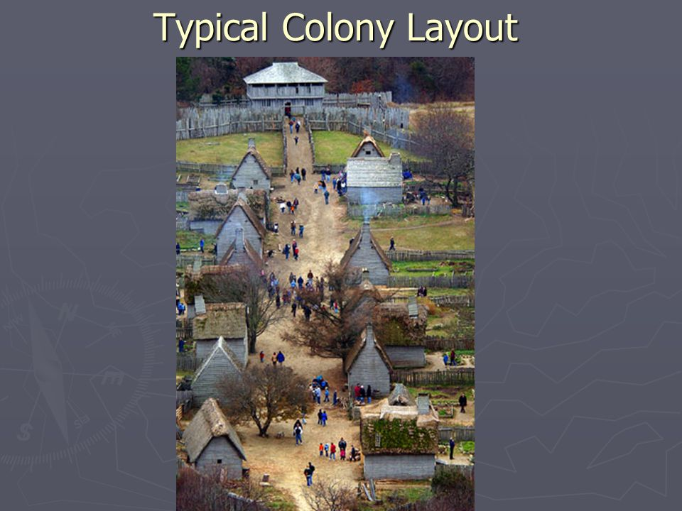 Typical Colony Layout