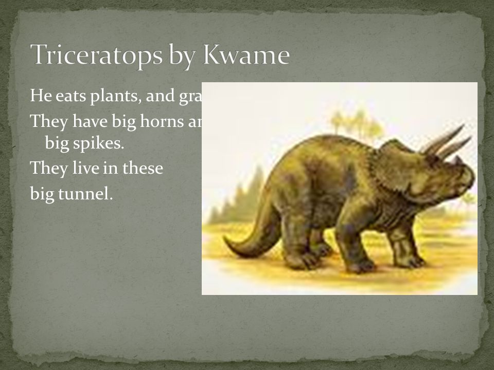 Series of plates on its back. It lived in Asia. Its cousin is the stegosaur.