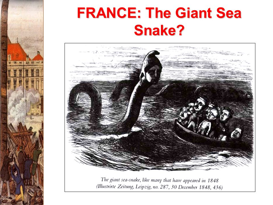 FRANCE: The Giant Sea Snake?