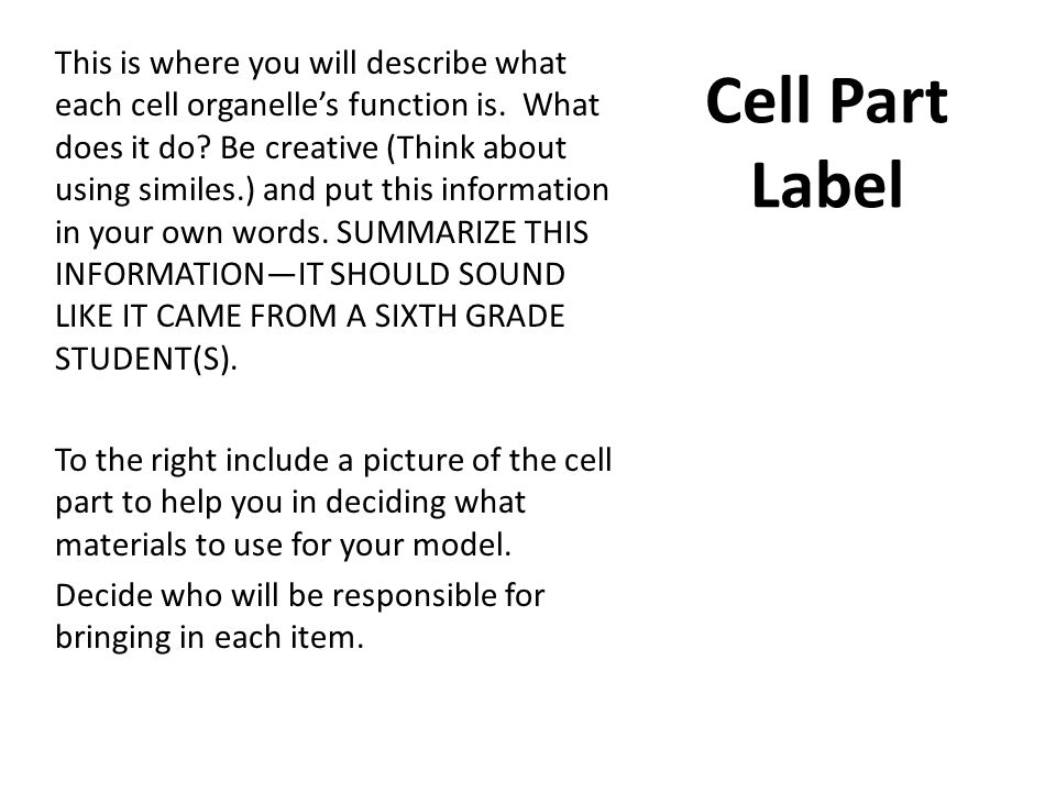 Cell Part Label This is where you will describe what each cell organelle's function is. What does it do? Be creative (Think about using similes.) and