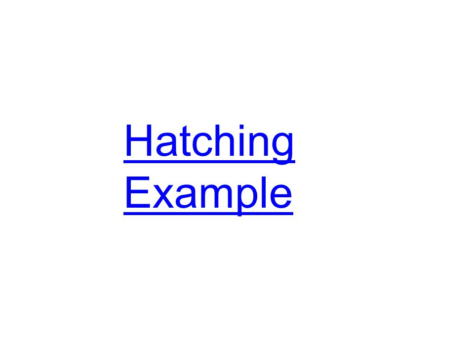 Hatching Example