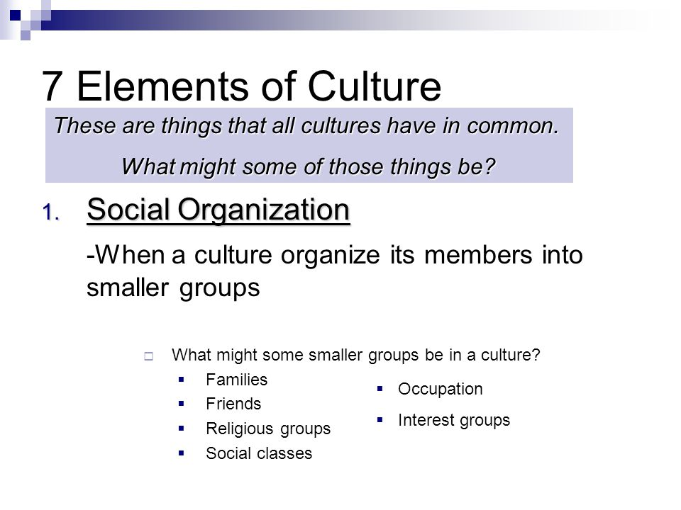 7 Elements of Culture 1. Social Organization -When a culture organize its members into smaller groups  What might some smaller groups be in a culture
