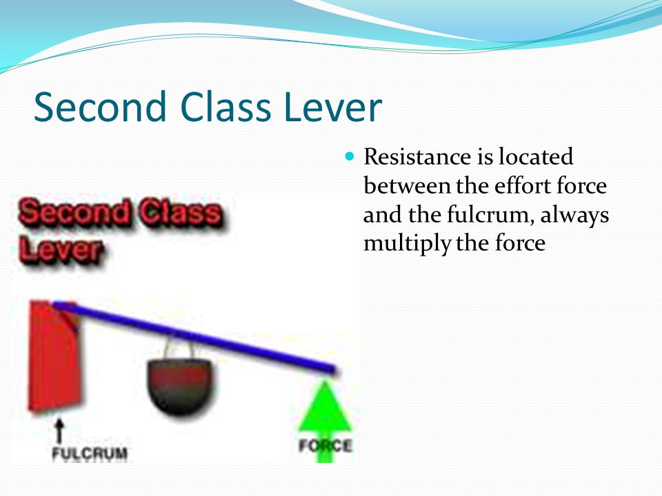 Second Class Lever Resistance is located between the effort force and the fulcrum, always multiply the force