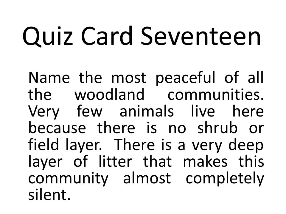 Quiz Card Seventeen Name the most peaceful of all the woodland communities.
