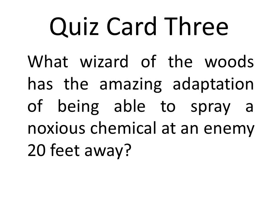 Quiz Card Three What wizard of the woods has the amazing adaptation of being able to spray a noxious chemical at an enemy 20 feet away