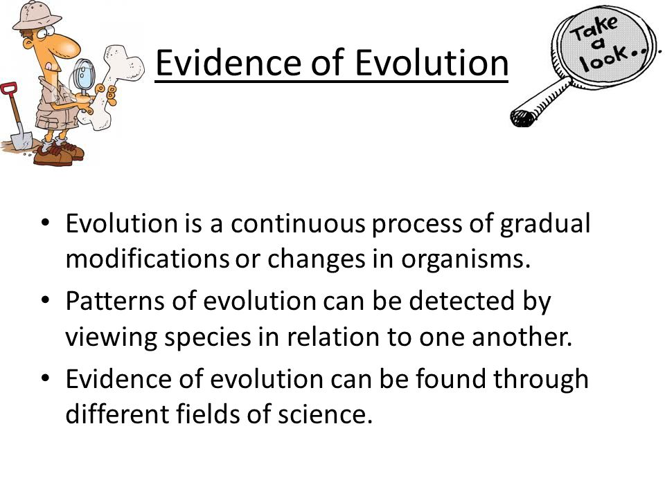 Evidence of Evolution Evolution is a continuous process of gradual modifications or changes in organisms. Patterns of evolution can be detected by vie