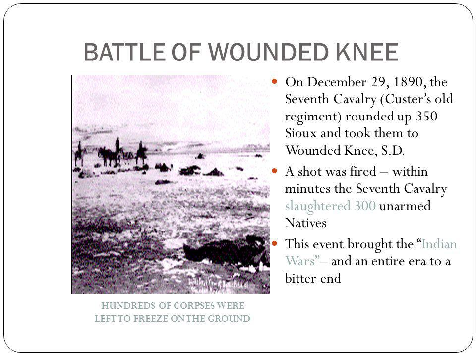 BATTLE OF WOUNDED KNEE On December 29, 1890, the Seventh Cavalry (Custer's old regiment) rounded up 350 Sioux and took them to Wounded Knee, S.D.