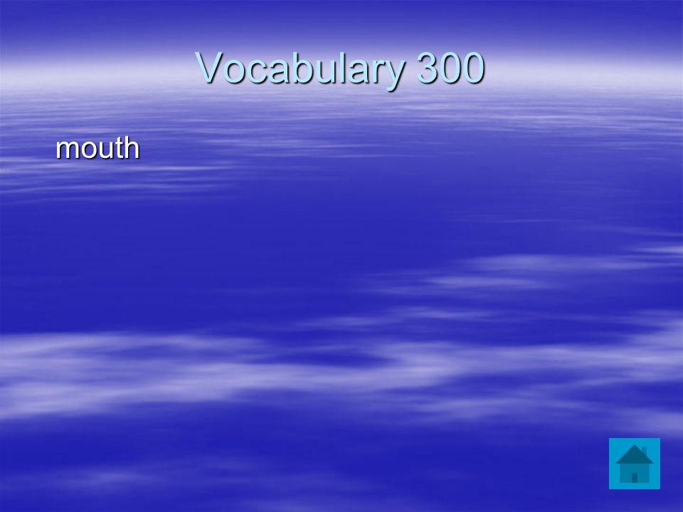 Vocabulary 300 mouth