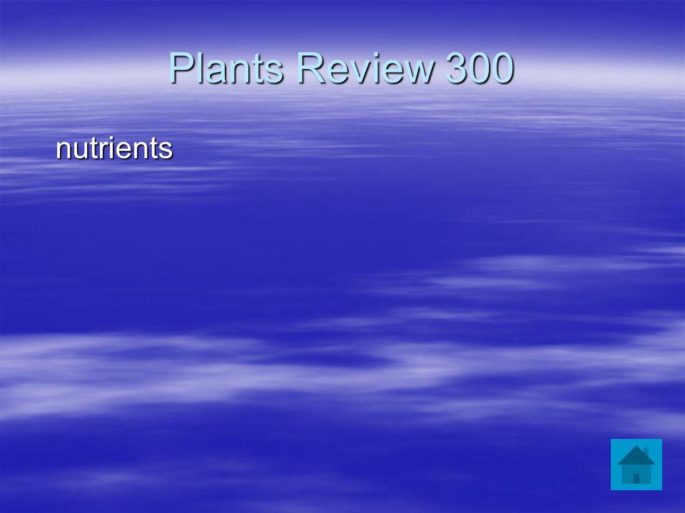 Plants Review 300 nutrients