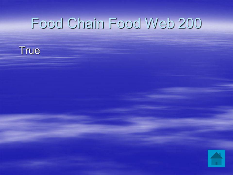Food Chain Food Web 200 True