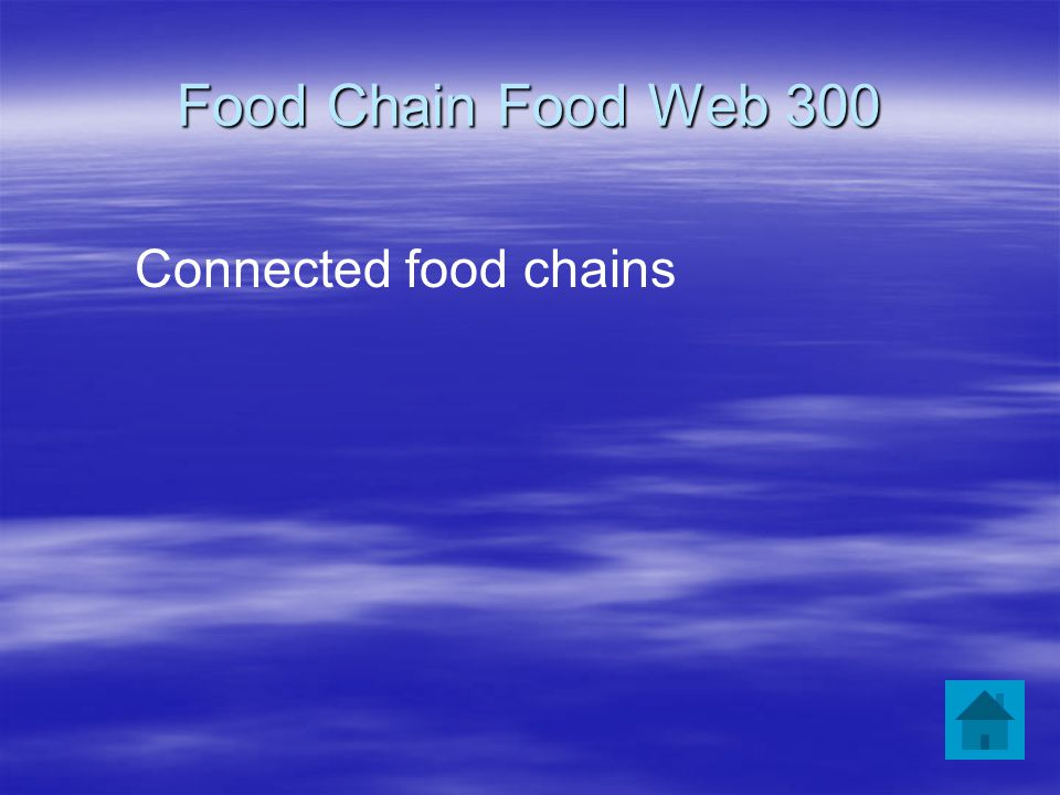 Food Chain Food Web 300 Connected food chains