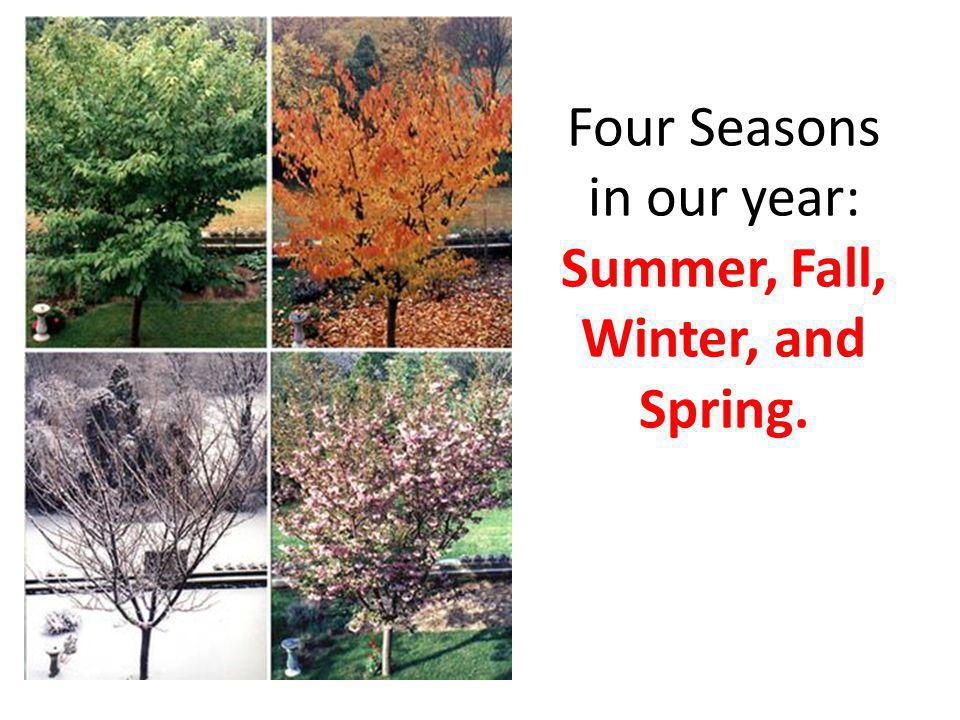 Four Seasons in our year: Summer, Fall, Winter, and Spring.