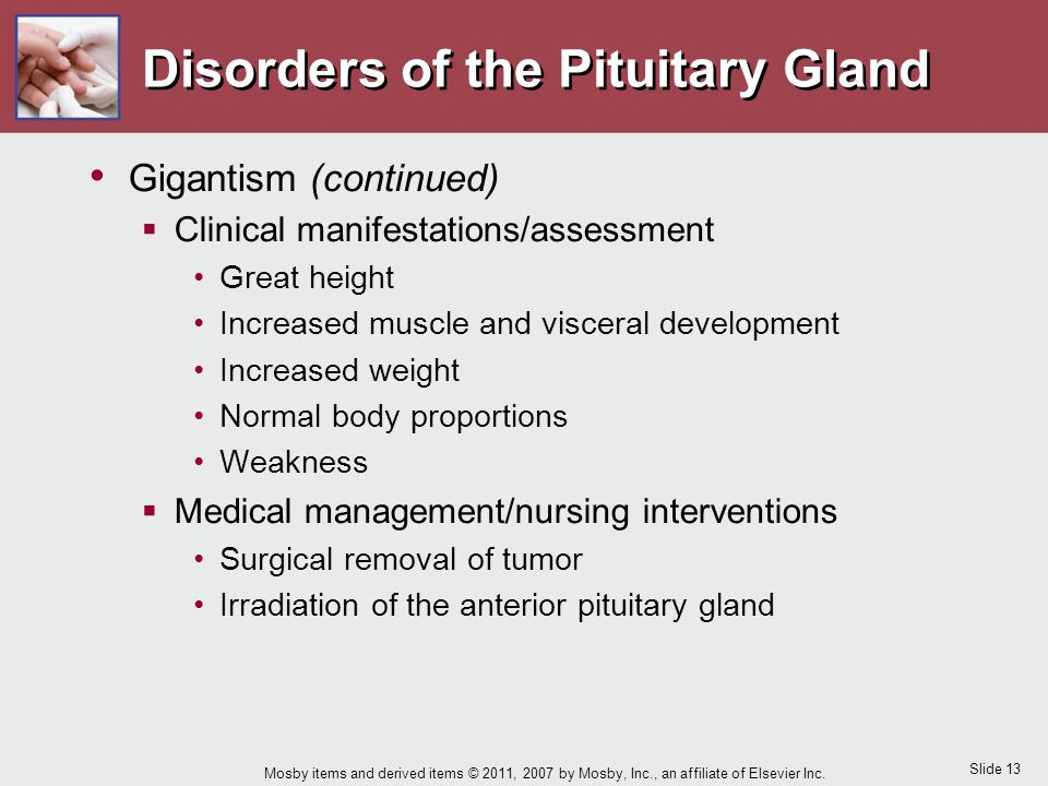 Slide 13 Mosby items and derived items © 2011, 2007 by Mosby, Inc., an affiliate of Elsevier Inc. Disorders of the Pituitary Gland Gigantism (continue