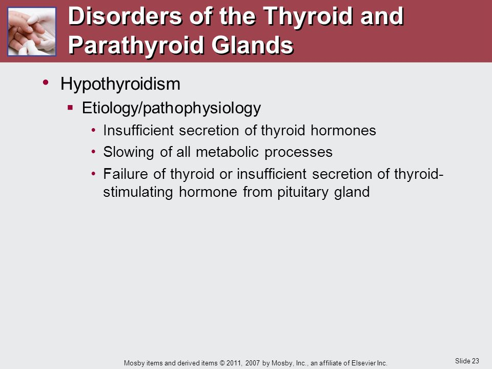 Slide 23 Mosby items and derived items © 2011, 2007 by Mosby, Inc., an affiliate of Elsevier Inc. Hypothyroidism  Etiology/pathophysiology Insufficie