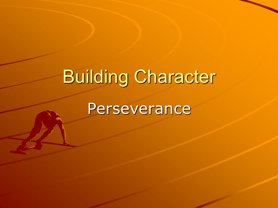 How might you demonstrate perseverance.