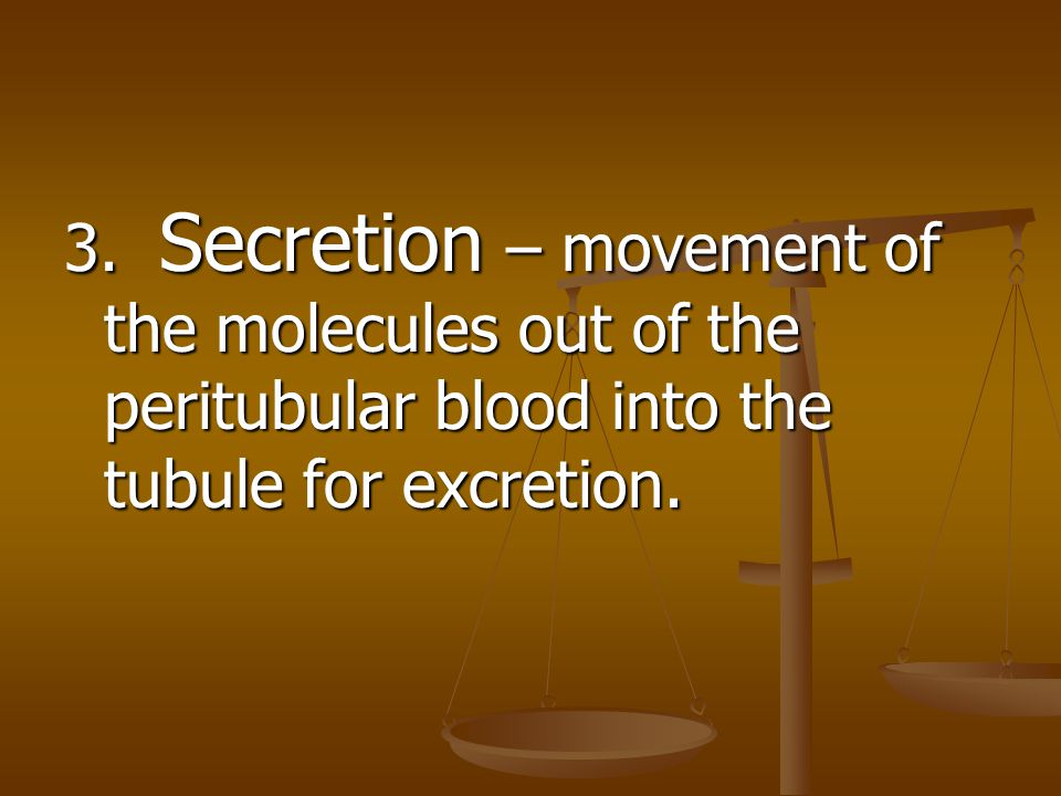 3. Secretion – movement of the molecules out of the peritubular blood into the tubule for excretion.