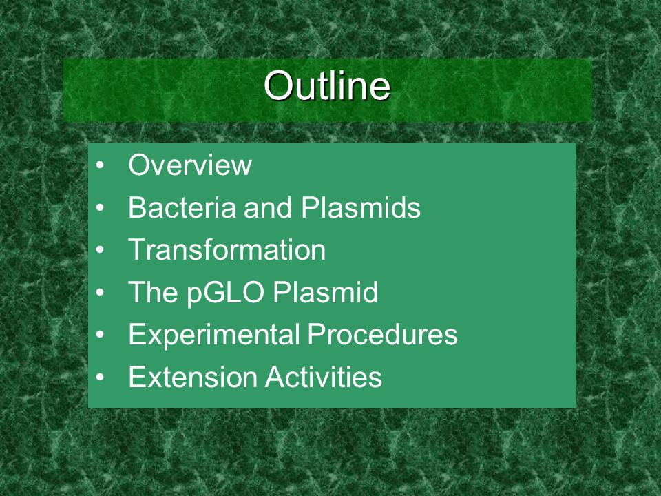 Outline Overview Bacteria and Plasmids Transformation The pGLO Plasmid Experimental Procedures Extension Activities
