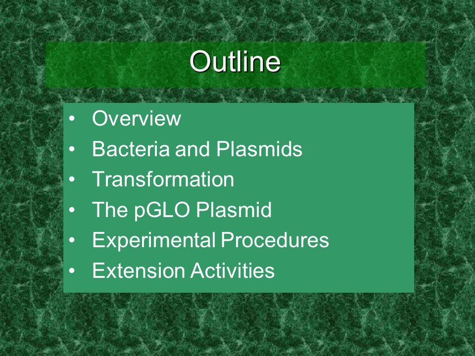 The pGLO Plasmid