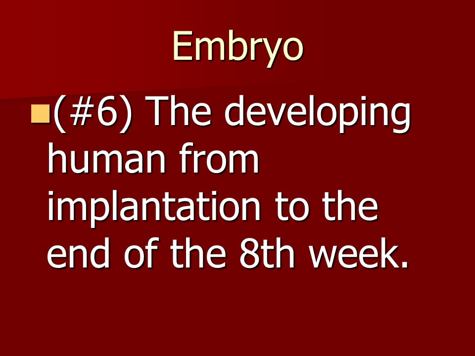 Embryo (#6) The developing human from implantation to the end of the 8th week.