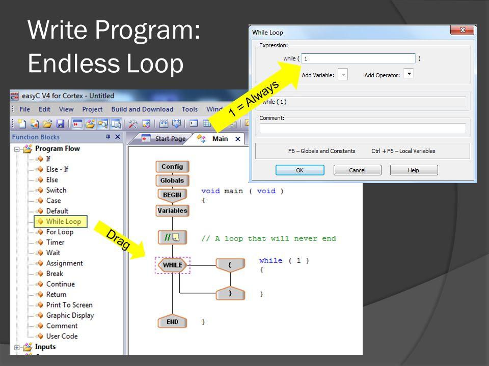 Write Program: Endless Loop Drag 1 = Always