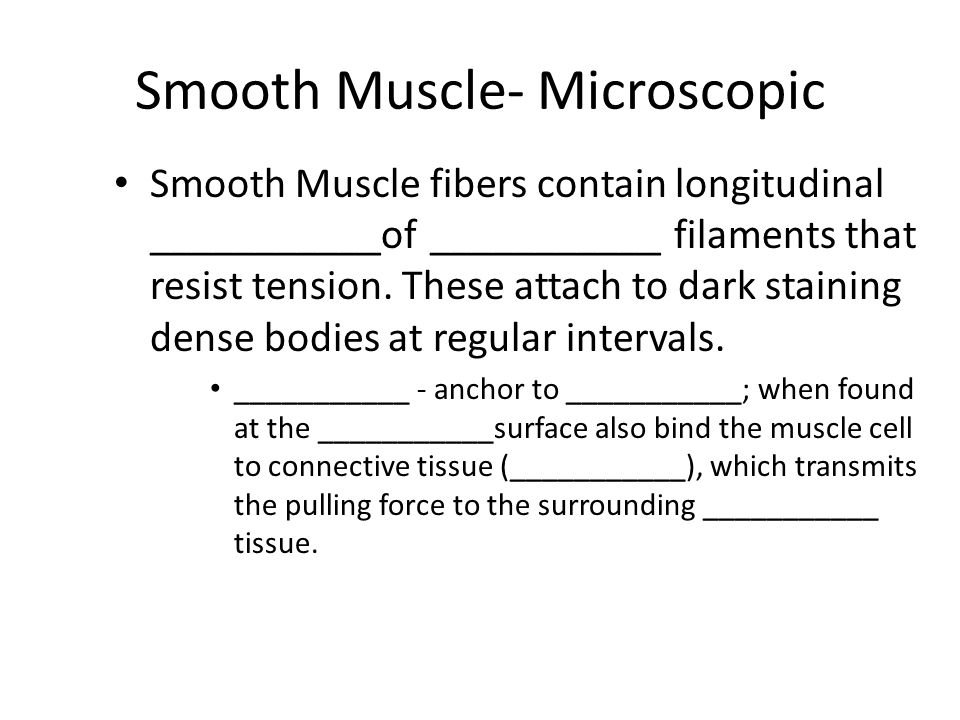 Smooth Muscle- Microscopic Smooth Muscle fibers contain longitudinal ___________of ___________ filaments that resist tension.