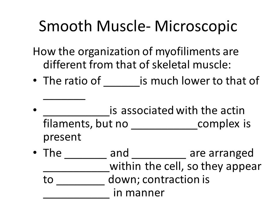 Smooth Muscle- Microscopic How the organization of myofiliments are different from that of skeletal muscle: The ratio of ______is much lower to that of _______ ___________is associated with the actin filaments, but no ___________complex is present The _______ and _________ are arranged ___________within the cell, so they appear to ________ down; contraction is ___________ in manner