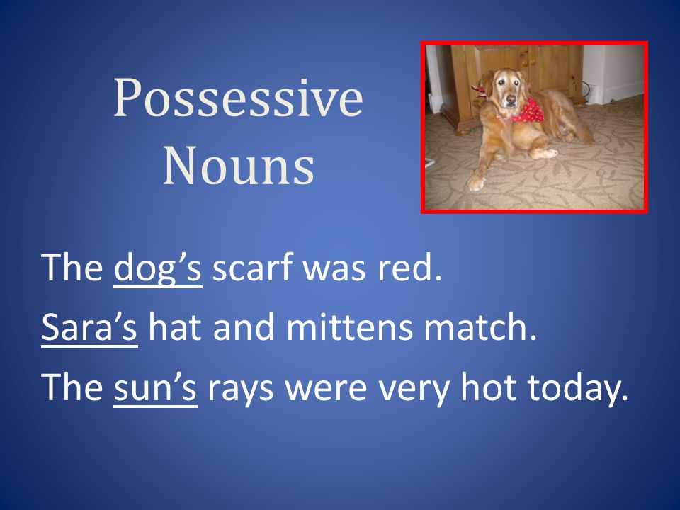 Possessive Nouns The dog's scarf was red. Sara's hat and mittens match. The sun's rays were very hot today.