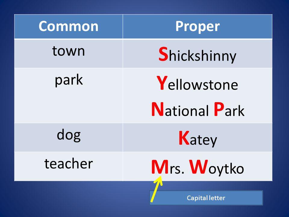 CommonProper town S hickshinny park Y ellowstone N ational P ark dog K atey teacher M rs.