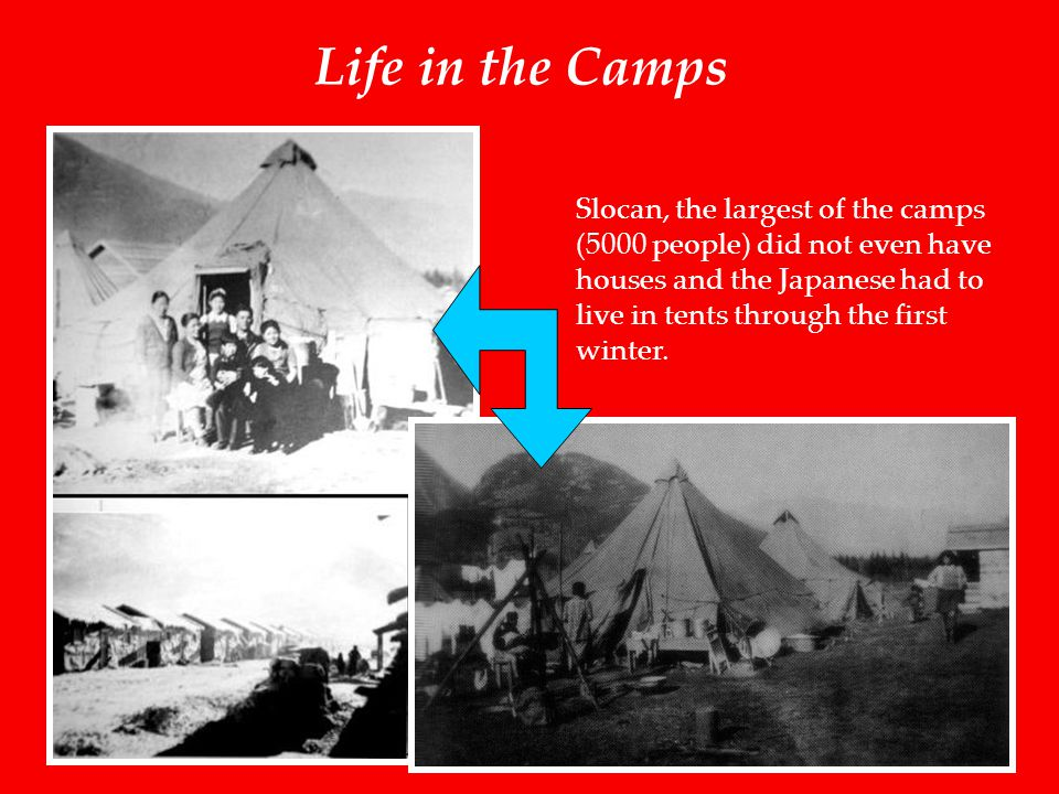 Life in the Camps Slocan, the largest of the camps (5000 people) did not even have houses and the Japanese had to live in tents through the first winter.