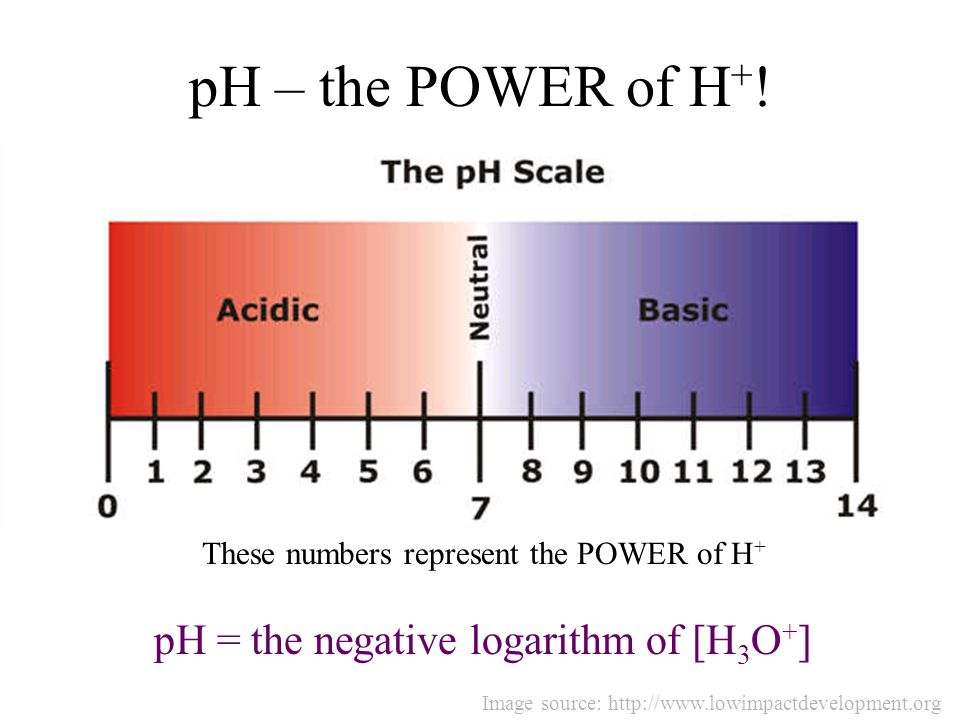 pH – the POWER of H + ! These numbers represent the POWER of H + pH = the negative logarithm of [H 3 O + ] Image source: http://www.lowimpactdevelopme