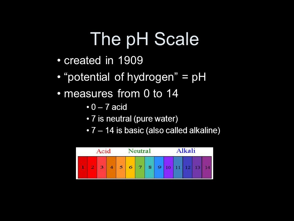 The pH Scale created in 1909 potential of hydrogen = pH measures from 0 to 14 0 – 7 acid 7 is neutral (pure water) 7 – 14 is basic (also called alkaline)