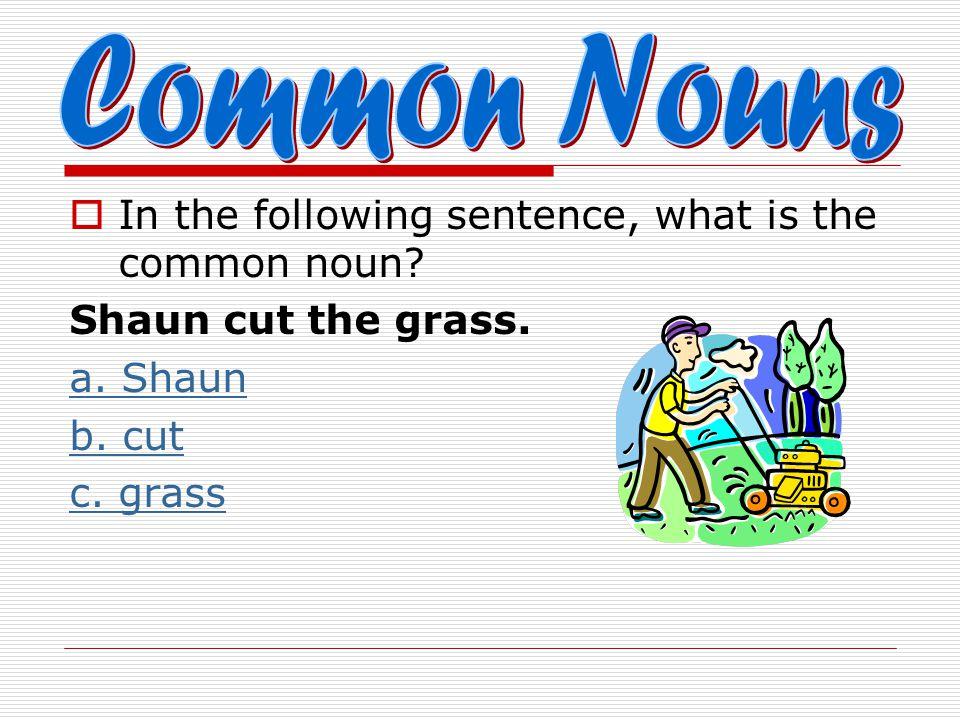  In the following sentence, what is the common noun? Shaun cut the grass. a. Shaun b. cut c. grass