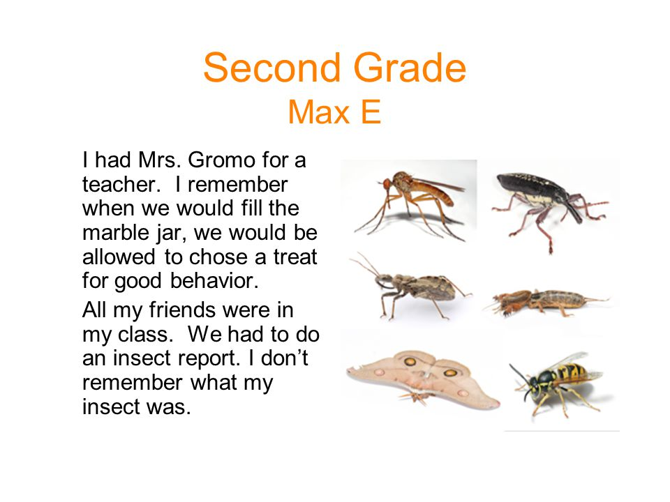 Second Grade Max E I had Mrs. Gromo for a teacher. I remember when we would fill the marble jar, we would be allowed to chose a treat for good behavio