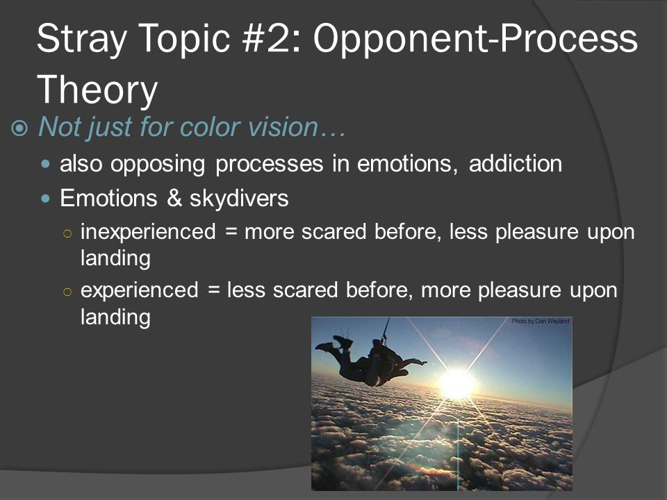 Stray Topic #2: Opponent-Process Theory  Not just for color vision… also opposing processes in emotions, addiction Emotions & skydivers ○ inexperienc