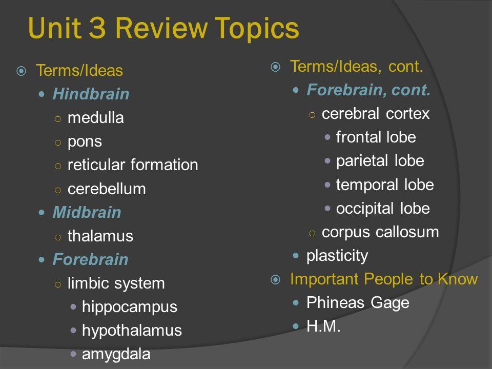 Unit 3 Review Topics  Terms/Ideas, cont.Forebrain, cont.