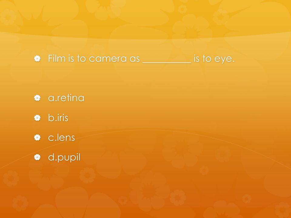  Film is to camera as __________ is to eye.  a.retina  b.iris  c.lens  d.pupil