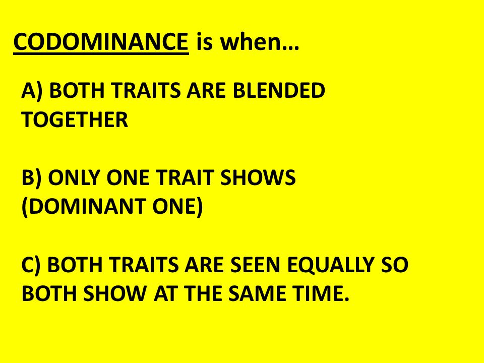 A) BOTH TRAITS ARE BLENDED TOGETHER B) ONLY ONE TRAIT SHOWS (DOMINANT ONE) C) BOTH TRAITS ARE SEEN EQUALLY SO BOTH SHOW AT THE SAME TIME. CODOMINANCE