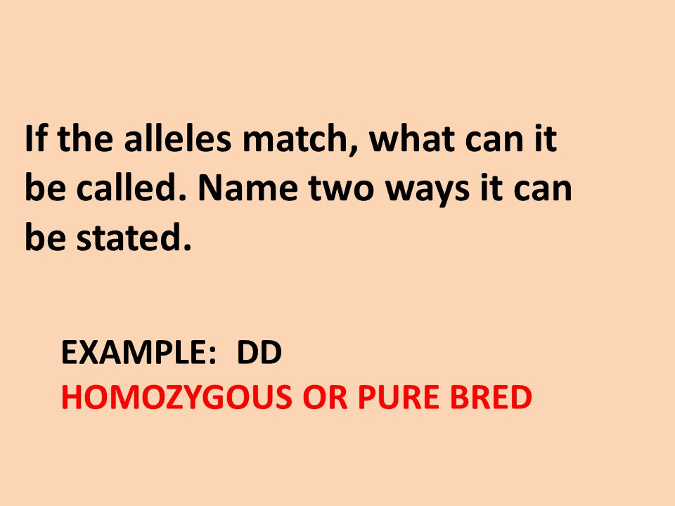 EXAMPLE: DD HOMOZYGOUS OR PURE BRED If the alleles match, what can it be called. Name two ways it can be stated.