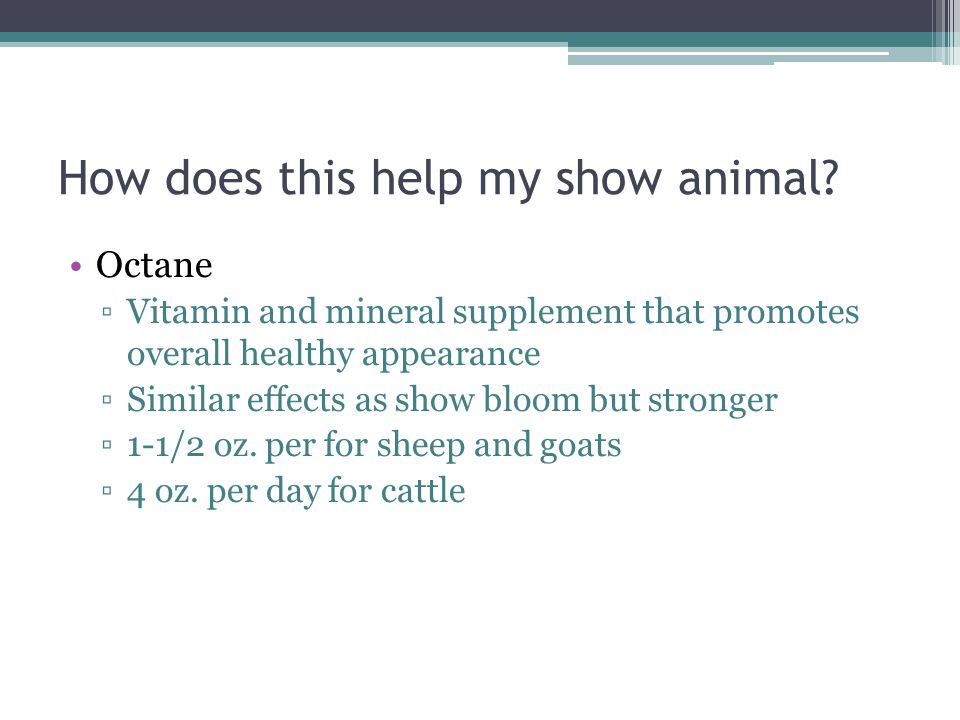 How does this help my show animal.