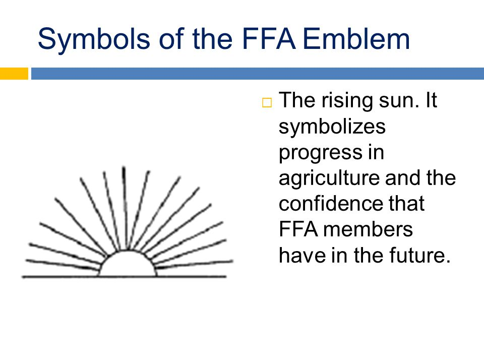 Symbols of the FFA Emblem  The rising sun. It symbolizes progress in agriculture and the confidence that FFA members have in the future.