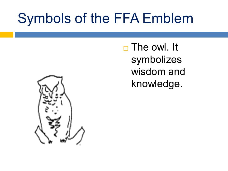Symbols of the FFA Emblem  The owl. It symbolizes wisdom and knowledge.