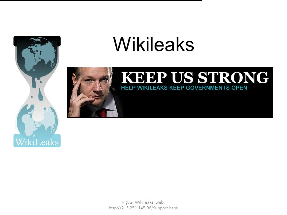 Fig. 2. Wikileaks, web, http://213.251.145.96/Support.html Wikileaks