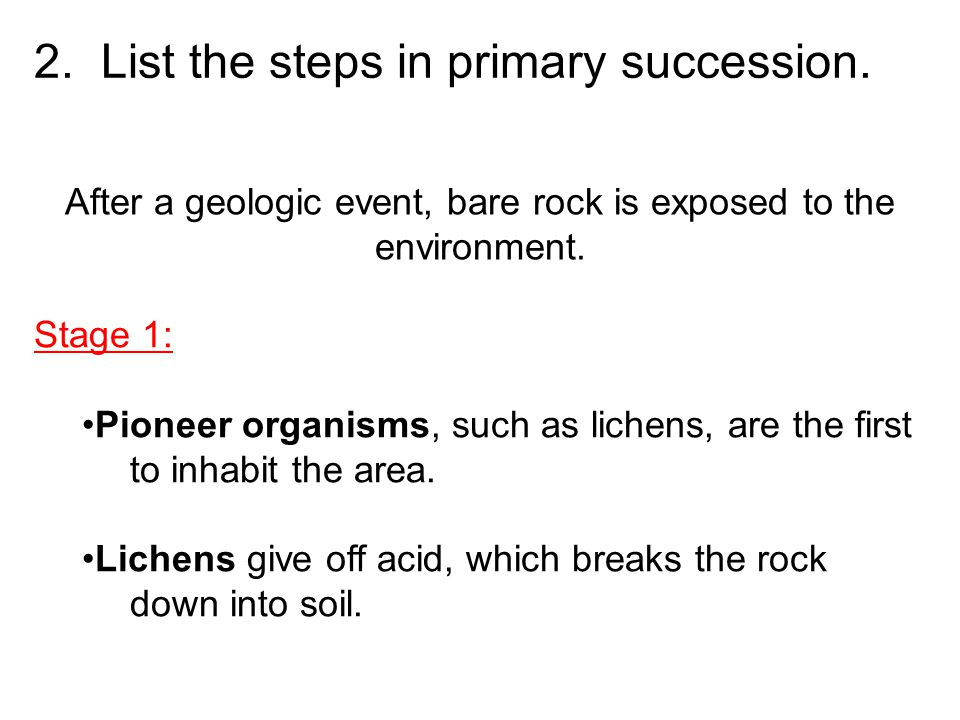 2. List the steps in primary succession. After a geologic event, bare rock is exposed to the environment. Stage 1: Pioneer organisms, such as lichens,