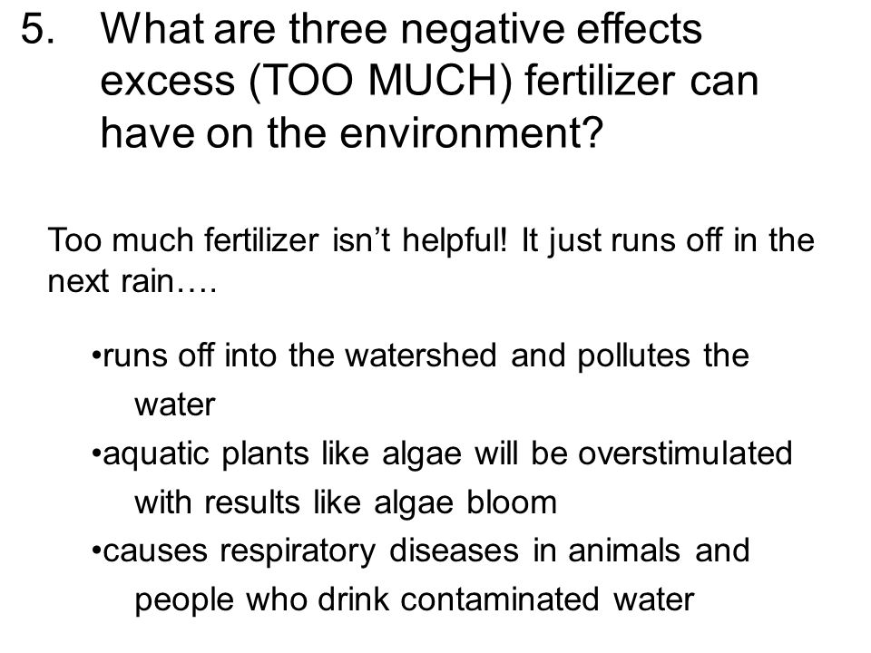 5.What are three negative effects excess (TOO MUCH) fertilizer can have on the environment? Too much fertilizer isn't helpful! It just runs off in the