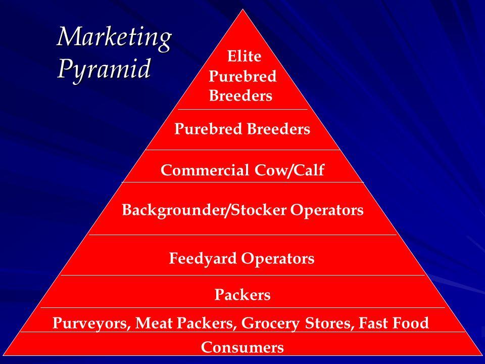 Elite Purebred Breeders Purebred Breeders Commercial Cow/Calf Backgrounder/Stocker Operators Feedyard Operators Packers Purveyors, Meat Packers, Groce
