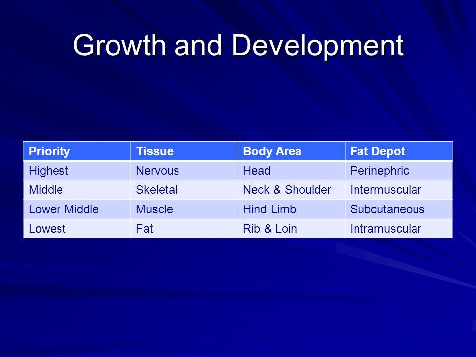 Growth and Development PriorityTissueBody AreaFat Depot HighestNervousHeadPerinephric MiddleSkeletalNeck & ShoulderIntermuscular Lower MiddleMuscleHin