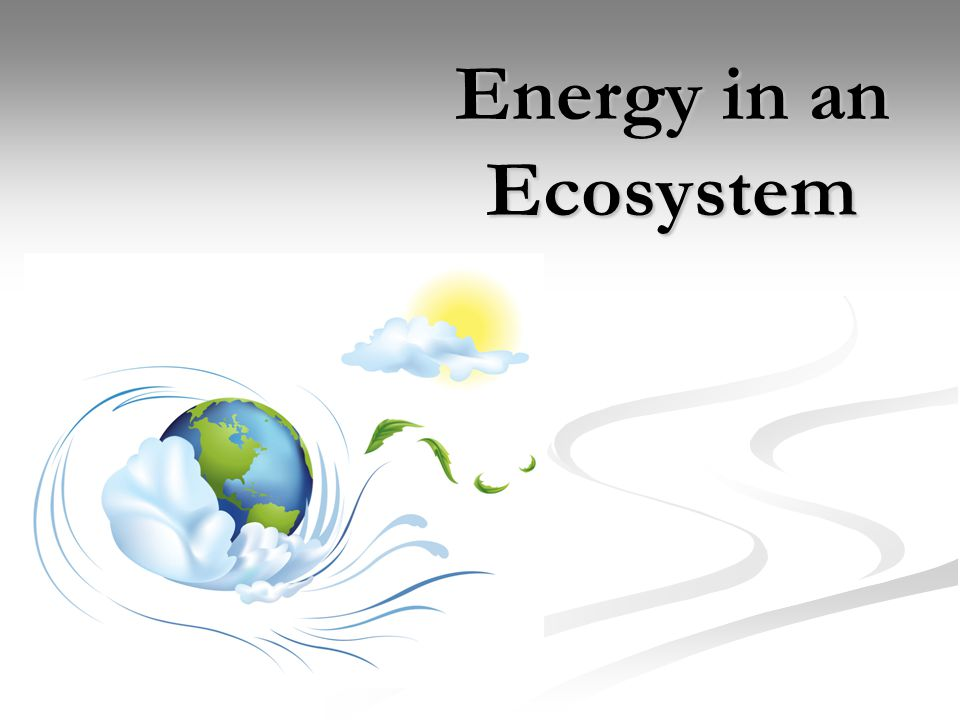 Where does the Earth's energy come from??.