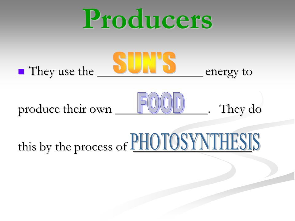 Producers They use the ________________ energy to They use the ________________ energy to produce their own ______________.
