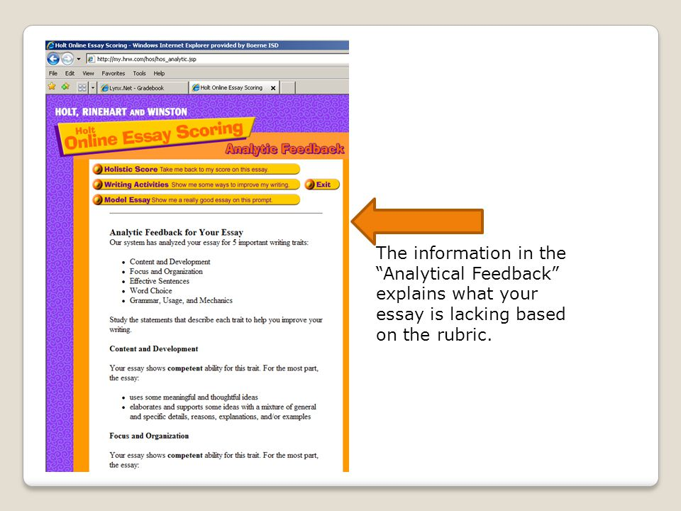 """The information in the """"Analytical Feedback"""" explains what your essay is lacking based on the rubric."""